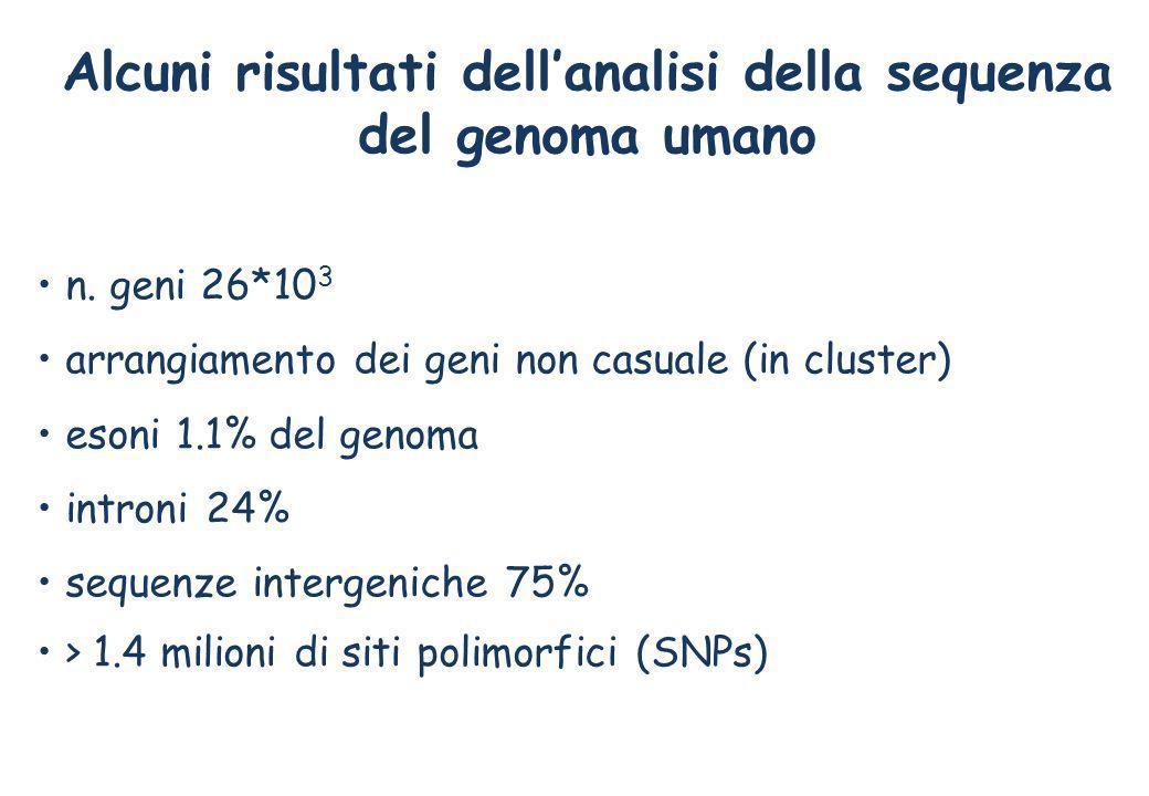 Alcuni risultati dell'analisi della sequenza del genoma umano