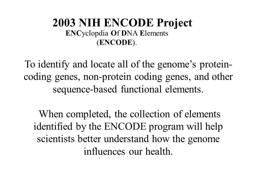 ENCyclopdia Of DNA Elements (ENCODE).