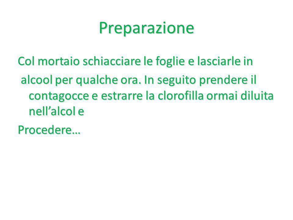 Preparazione