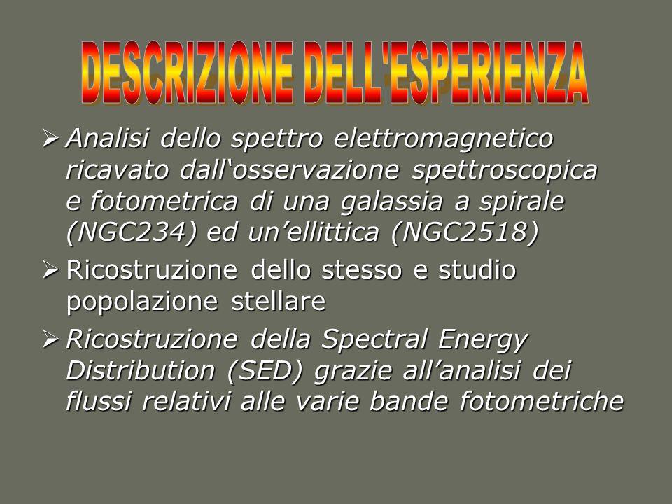 DESCRIZIONE DELL ESPERIENZA