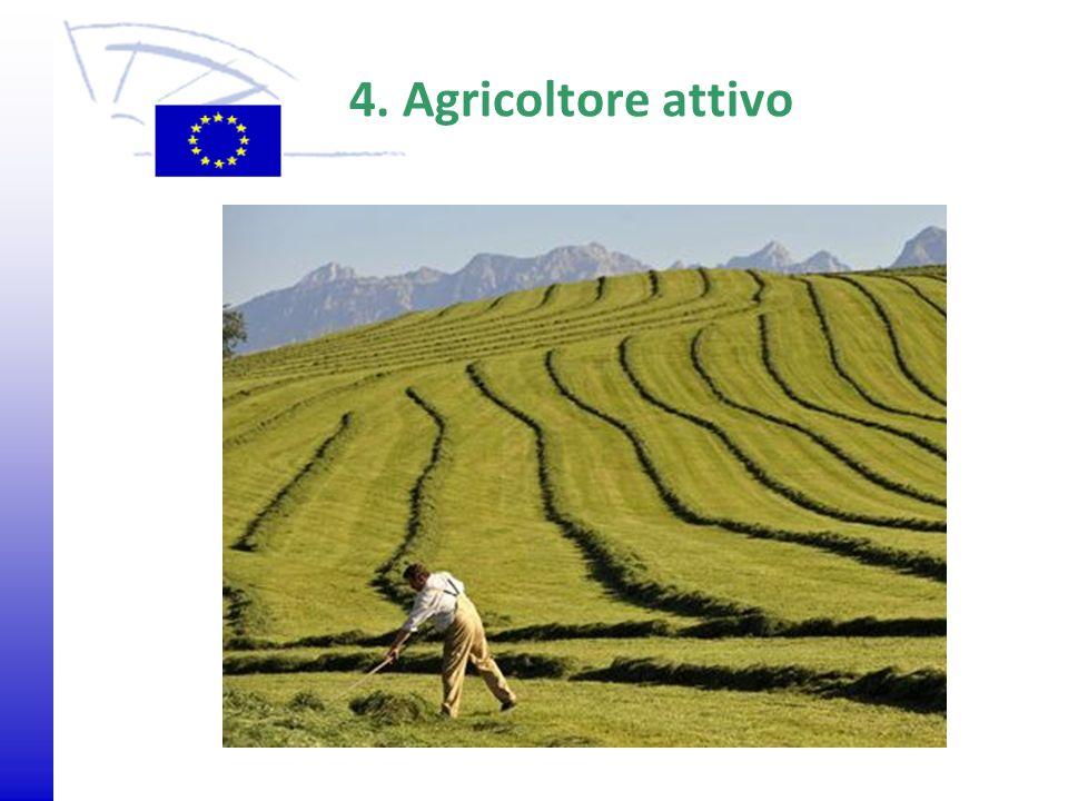 4. Agricoltore attivo