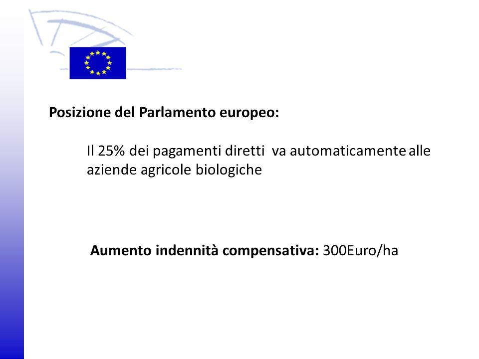Posizione del Parlamento europeo: