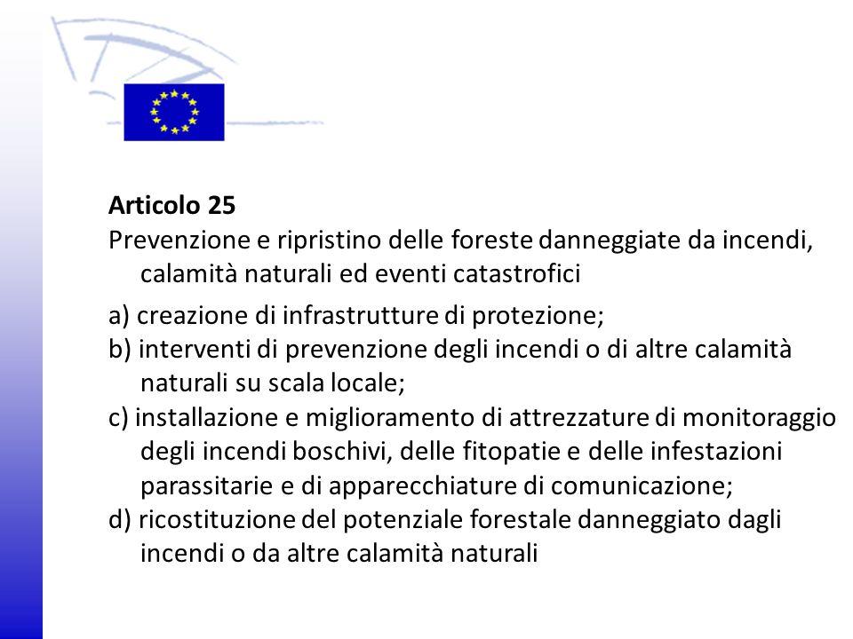 a) creazione di infrastrutture di protezione;