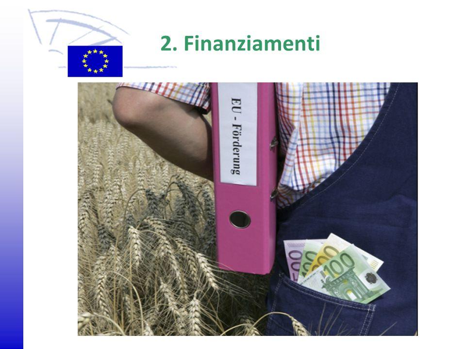 2. Finanziamenti
