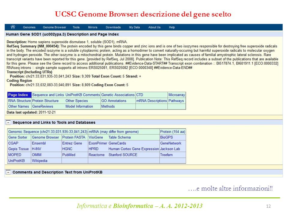 UCSC Genome Browser: descrizione del gene scelto