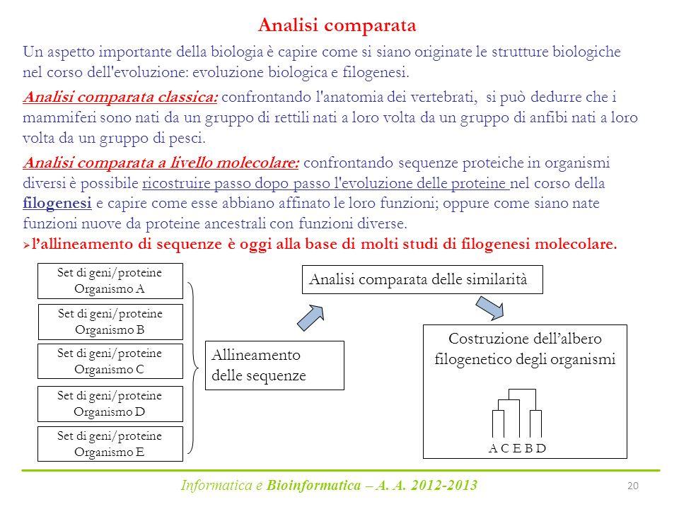 Costruzione dell'albero filogenetico degli organismi