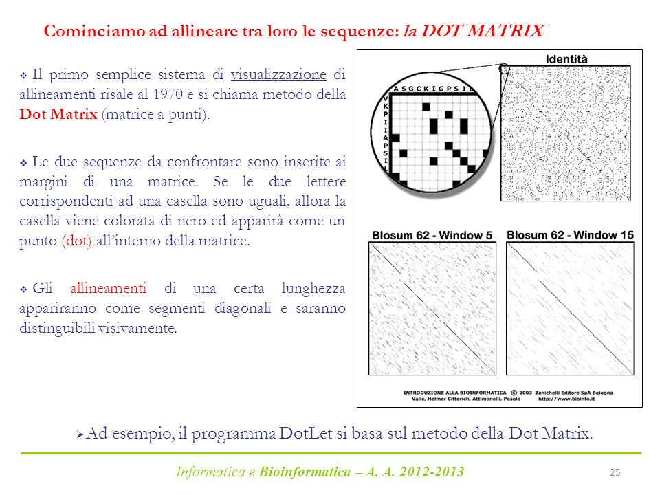 Cominciamo ad allineare tra loro le sequenze: la DOT MATRIX