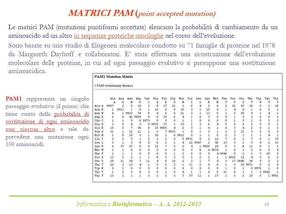 MATRICI PAM (point accepted mutation)