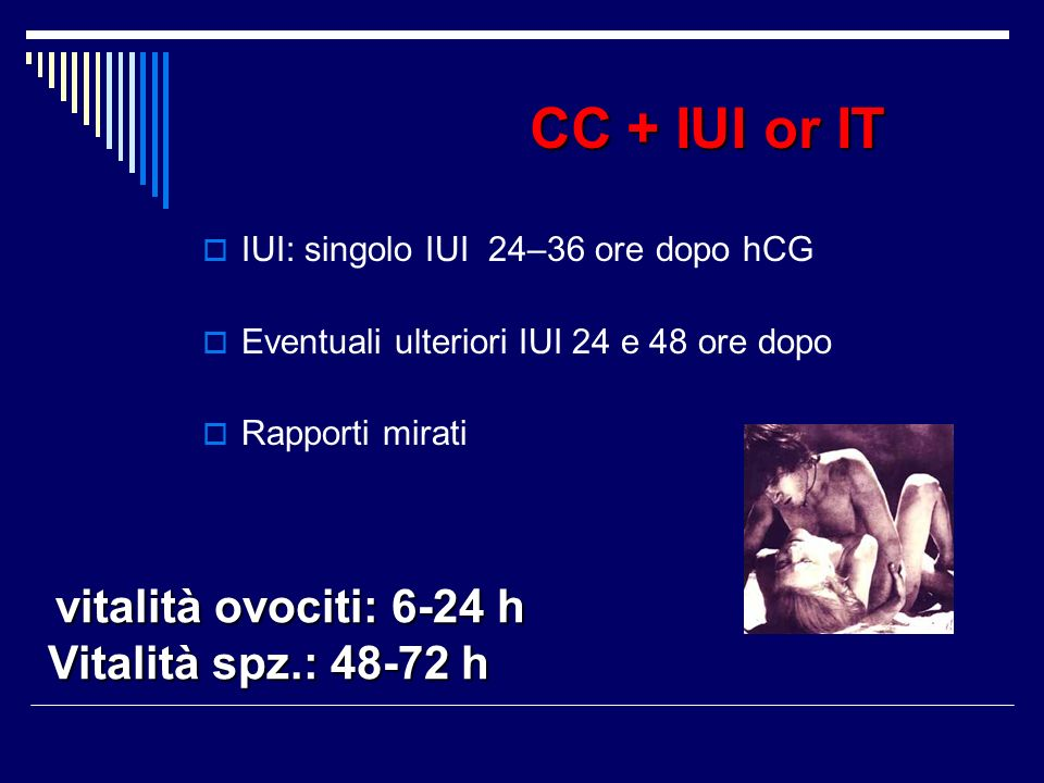 CC + IUI or IT Vitalità spz.: 48-72 h