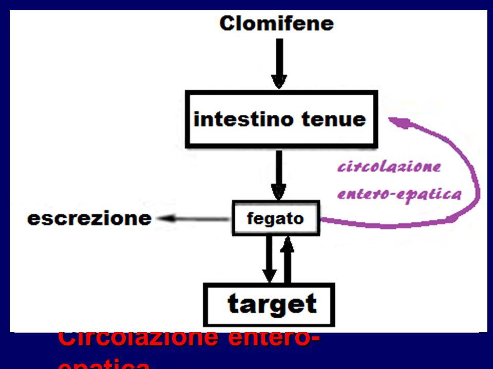 Circolazione entero-epatica
