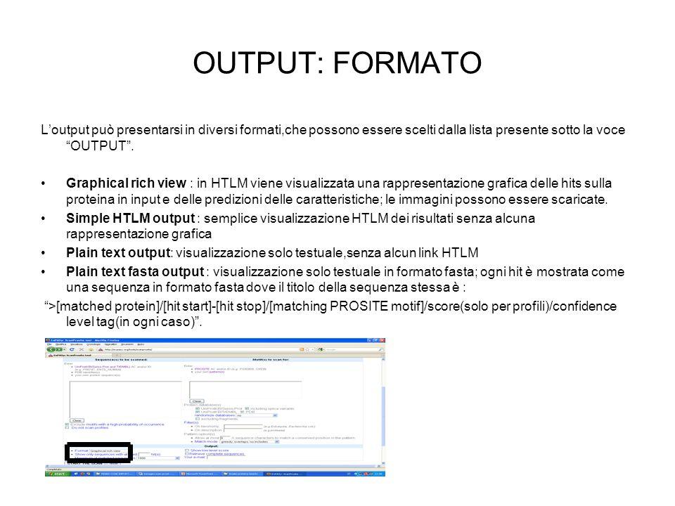 OUTPUT: FORMATO L'output può presentarsi in diversi formati,che possono essere scelti dalla lista presente sotto la voce OUTPUT .