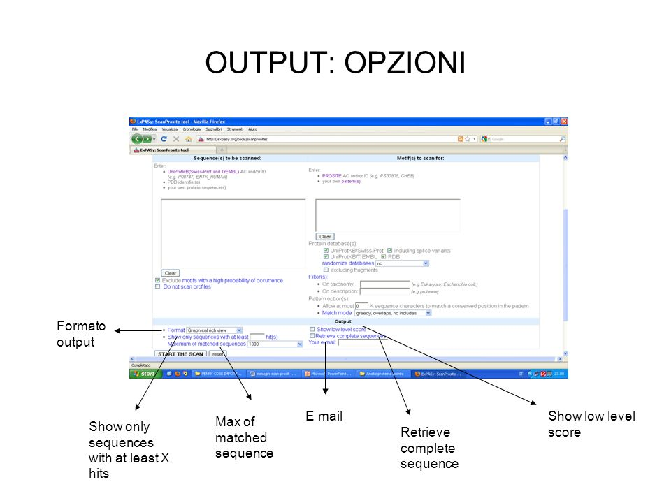 OUTPUT: OPZIONI Formato output E mail Show low level score