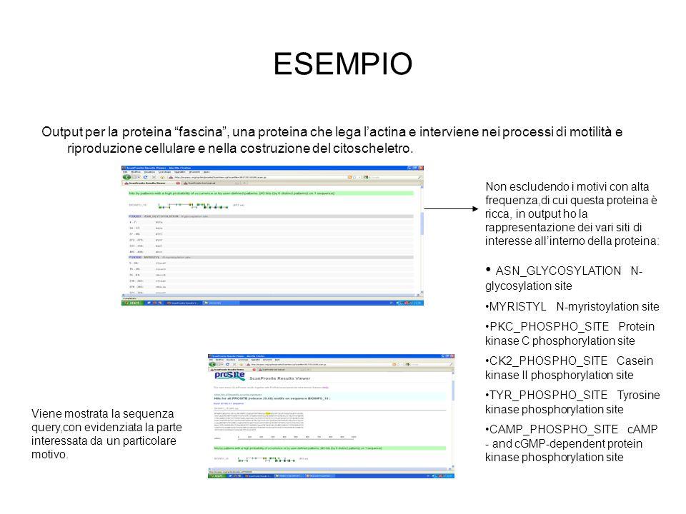 ESEMPIO ASN_GLYCOSYLATION N-glycosylation site