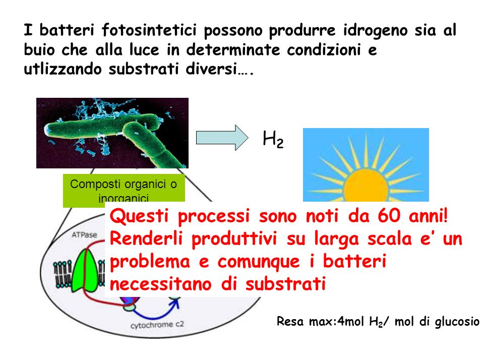 Composti organici o inorganici