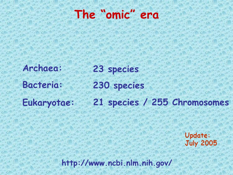 The omic era Archaea: 23 species Bacteria: 230 species Eukaryotae: