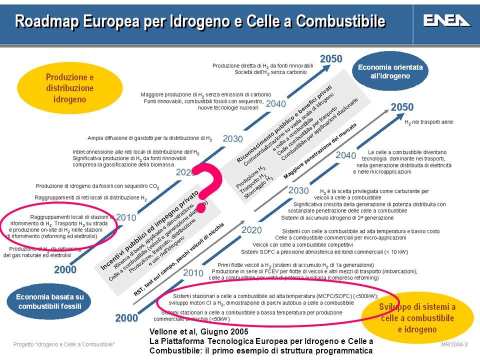 Vellone et al, Giugno 2005.