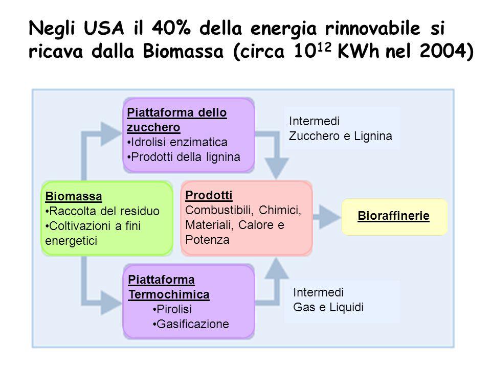 Negli USA il 40% della energia rinnovabile si ricava dalla Biomassa (circa 1012 KWh nel 2004)