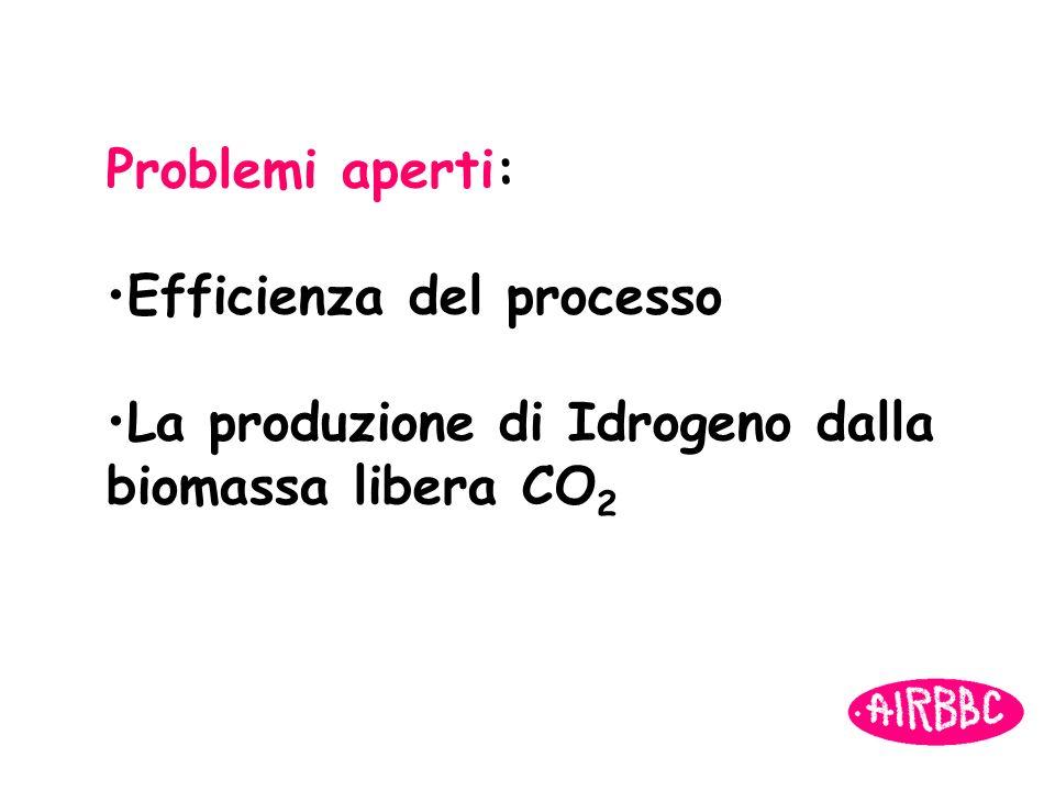 Problemi aperti: Efficienza del processo La produzione di Idrogeno dalla biomassa libera CO2