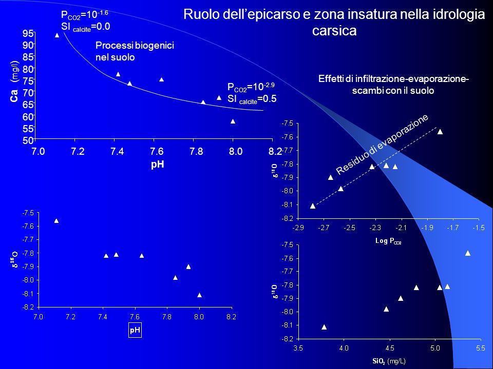 Ruolo dell'epicarso e zona insatura nella idrologia carsica