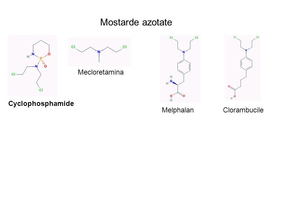 Mostarde azotate Mecloretamina Cyclophosphamide Melphalan Clorambucile