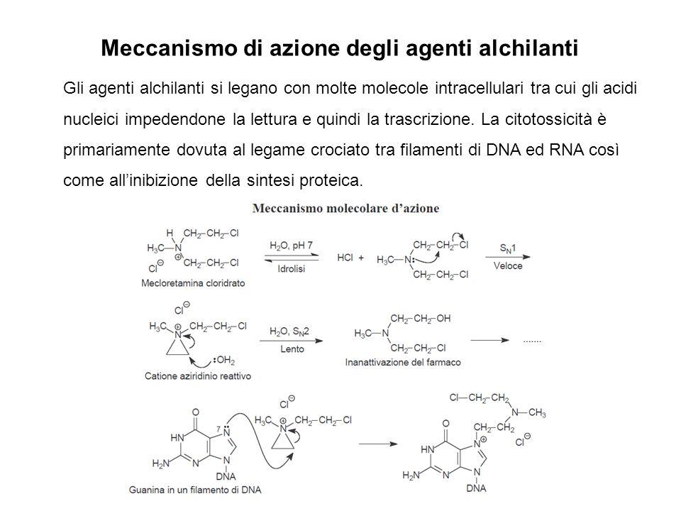 Meccanismo di azione degli agenti alchilanti