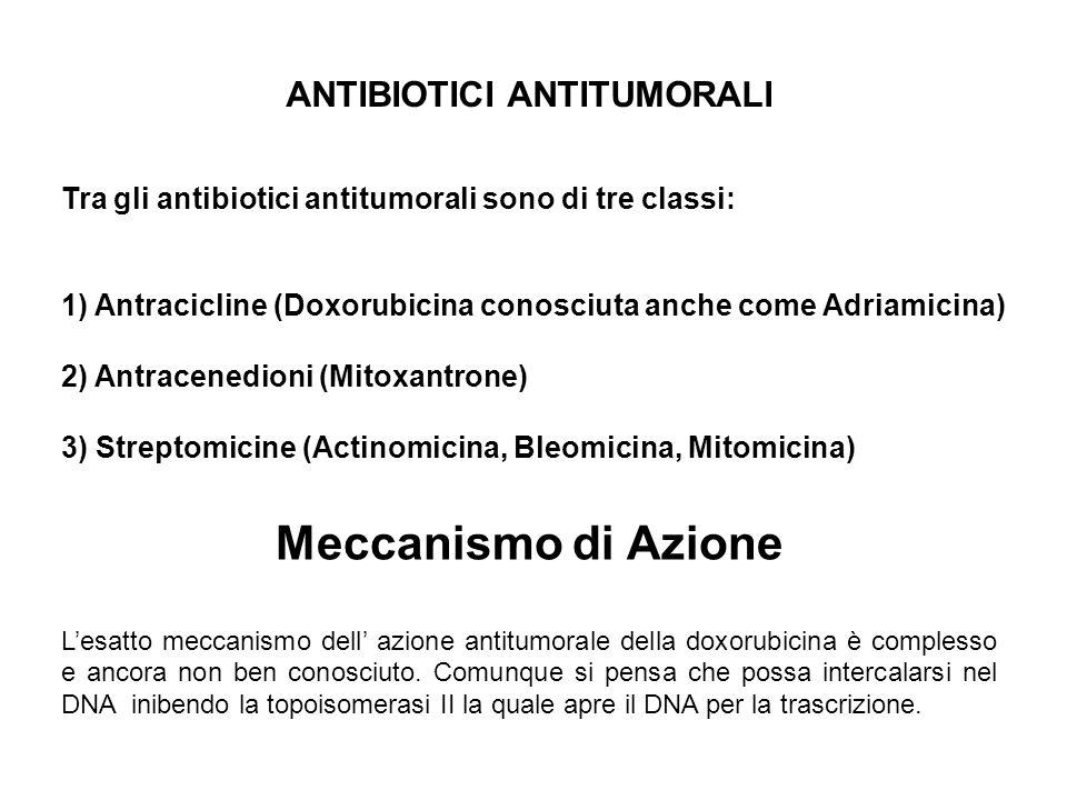 Meccanismo di Azione ANTIBIOTICI ANTITUMORALI