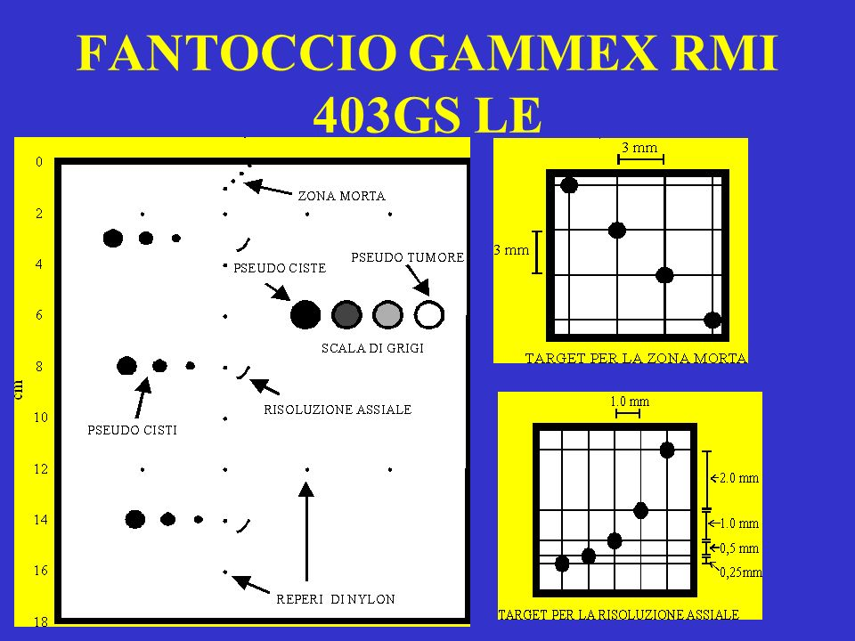 FANTOCCIO GAMMEX RMI 403GS LE
