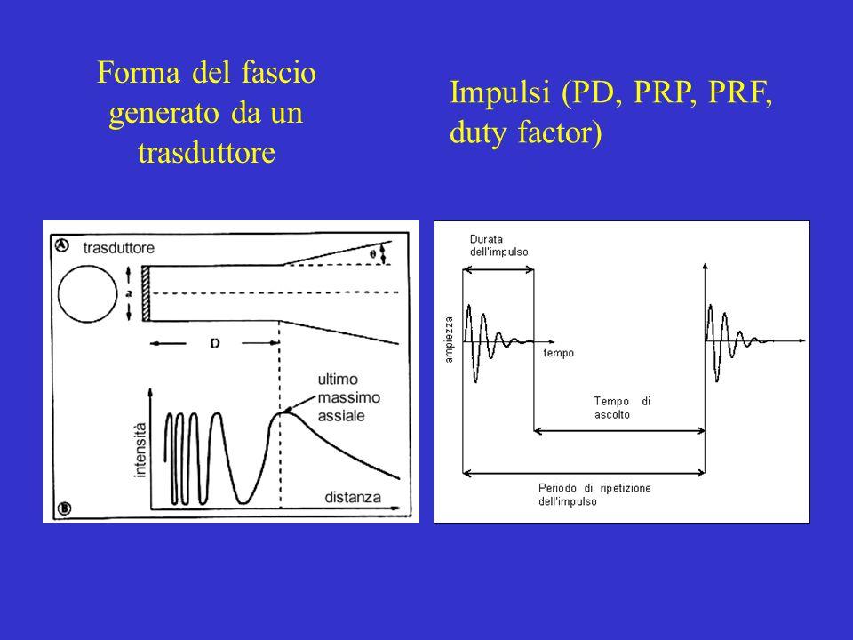 Forma del fascio generato da un trasduttore