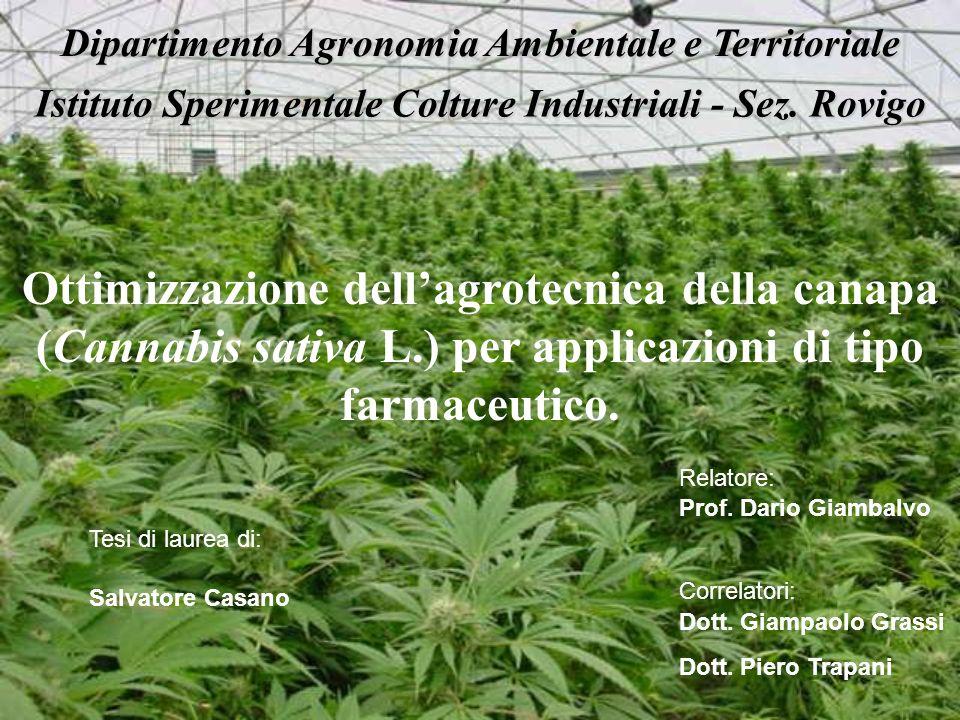 Dipartimento Agronomia Ambientale e Territoriale