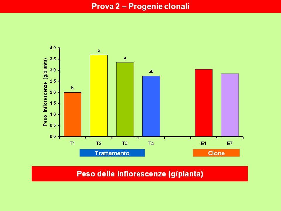 Prova 2 – Progenie clonali