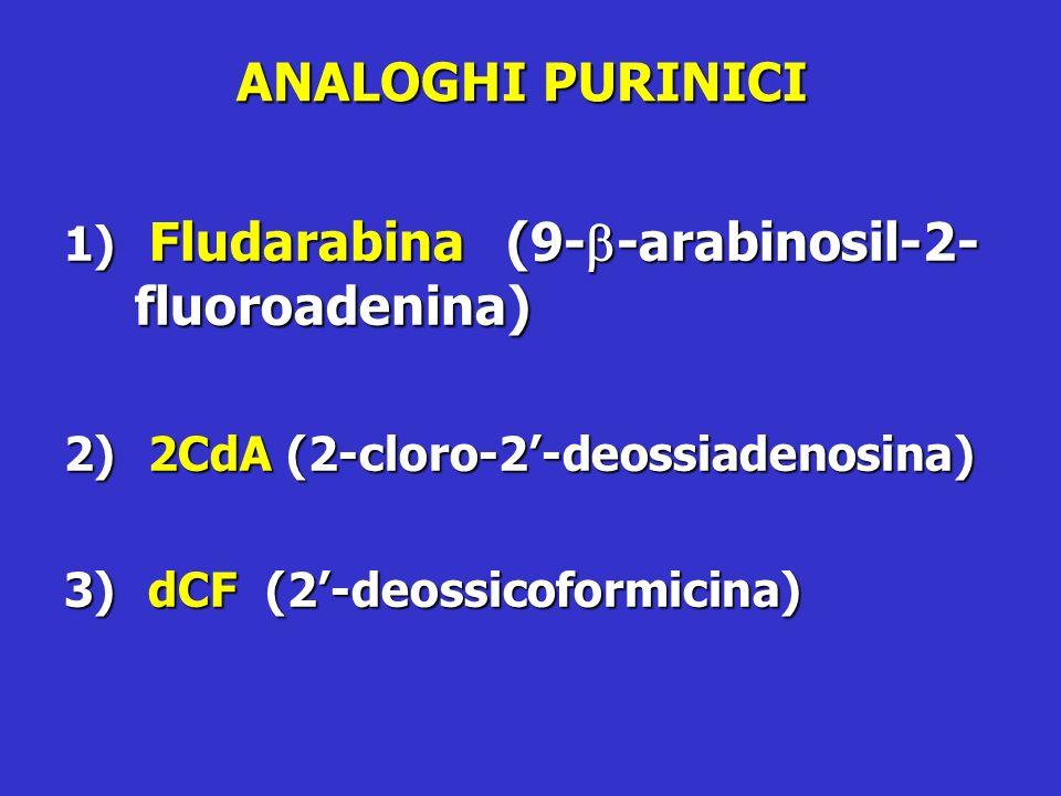 ANALOGHI PURINICI Fludarabina (9-b-arabinosil-2-fluoroadenina)
