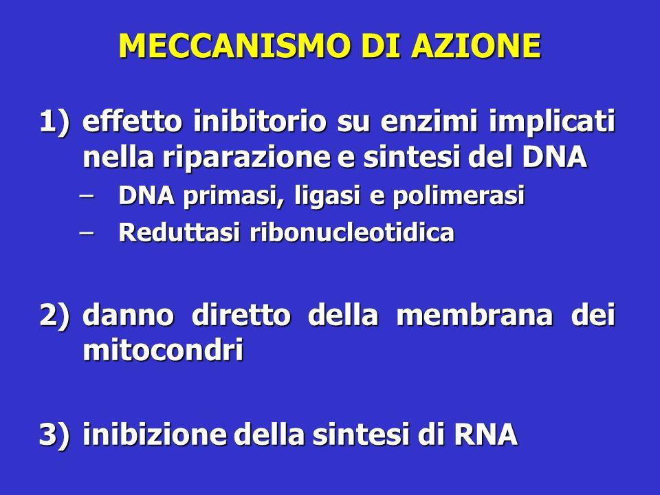 MECCANISMO DI AZIONE effetto inibitorio su enzimi implicati nella riparazione e sintesi del DNA. DNA primasi, ligasi e polimerasi.