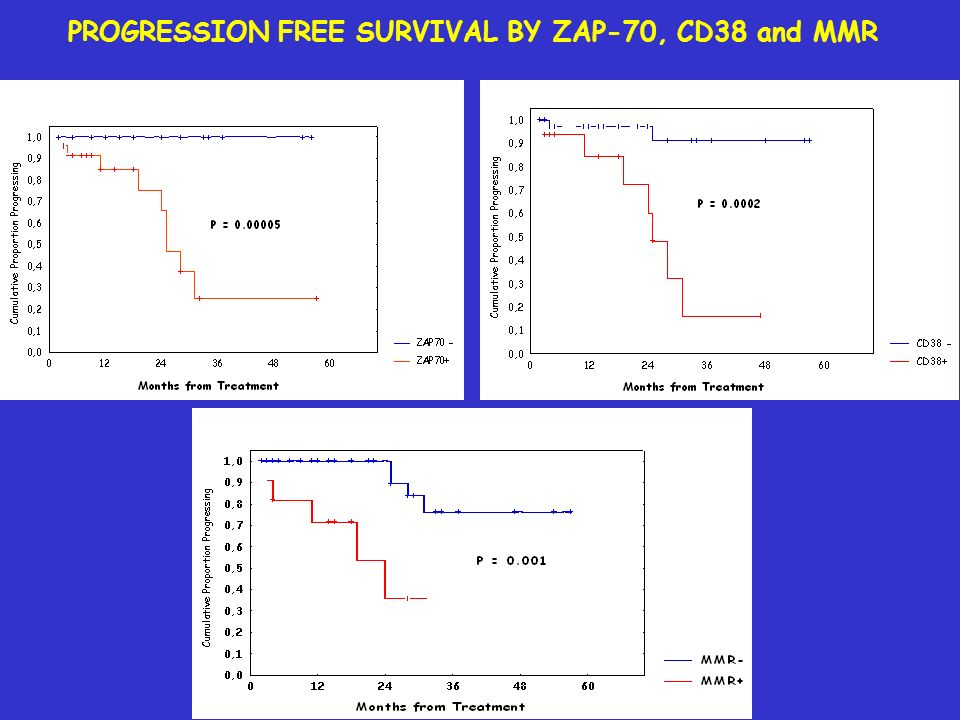 PROGRESSION FREE SURVIVAL BY ZAP-70, CD38 and MMR