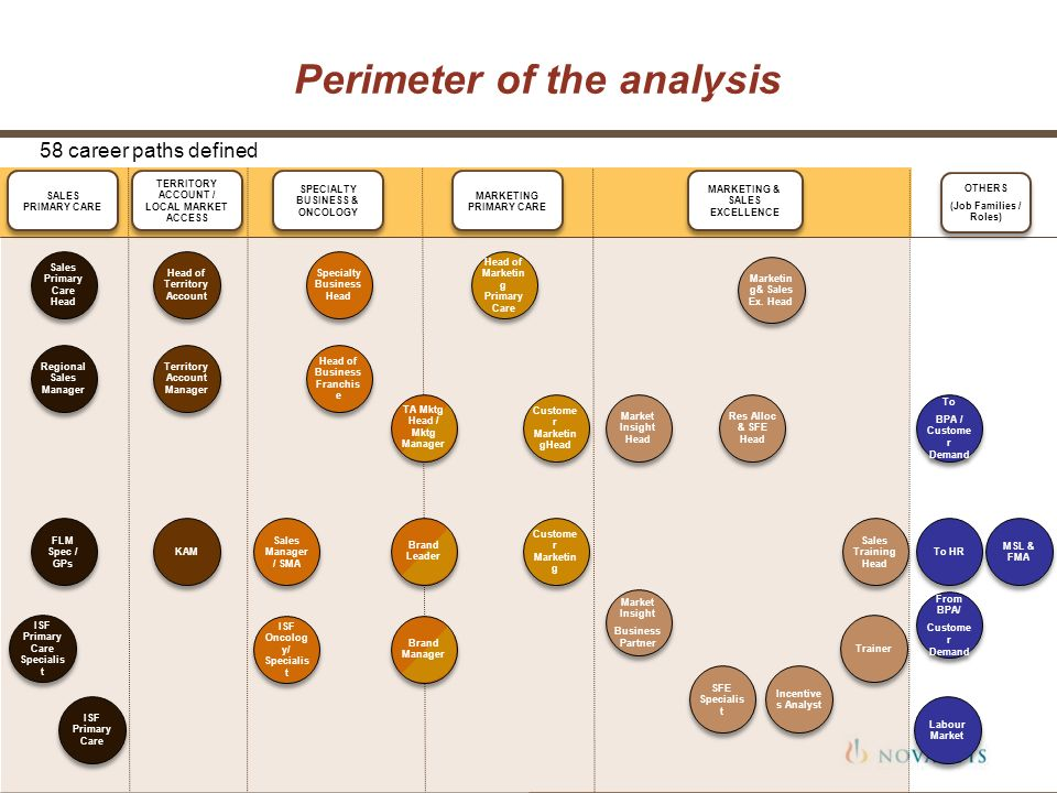 Perimeter of the analysis