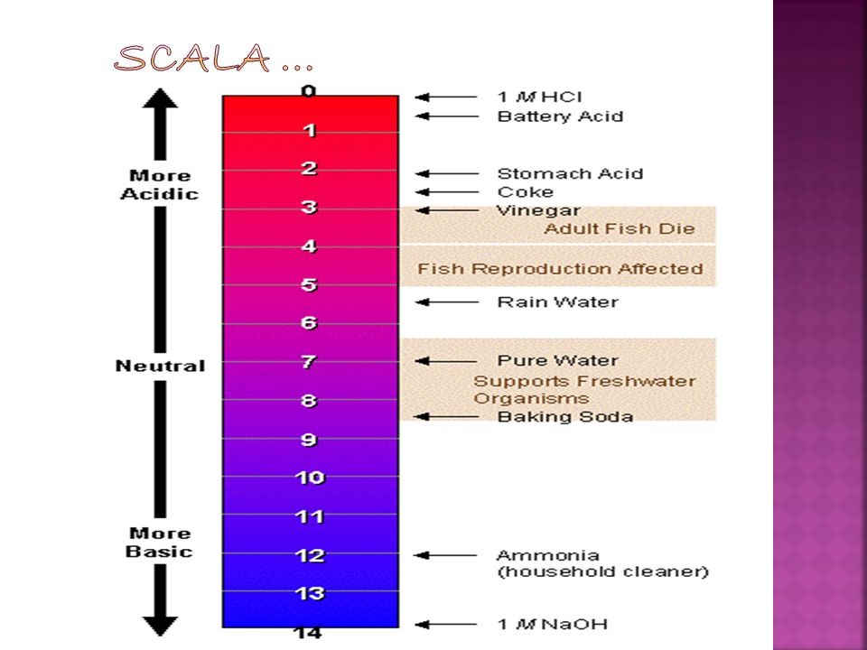 scala …