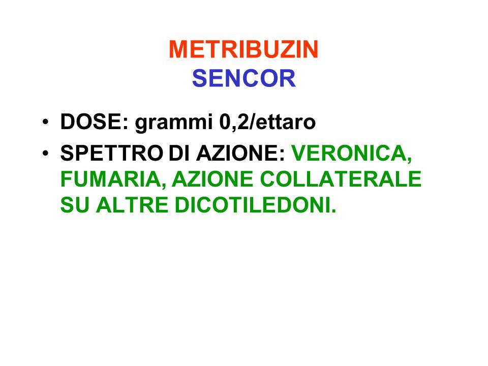 METRIBUZIN SENCOR DOSE: grammi 0,2/ettaro
