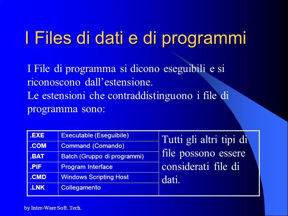 I Files di dati e di programmi