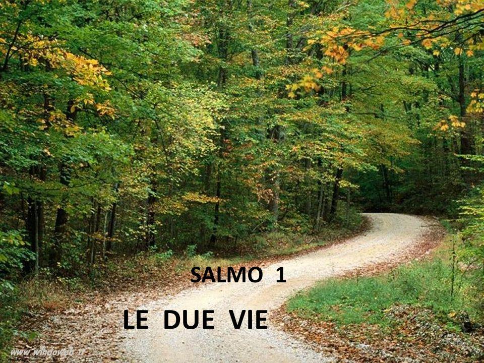 SALMO 1 LE DUE VIE