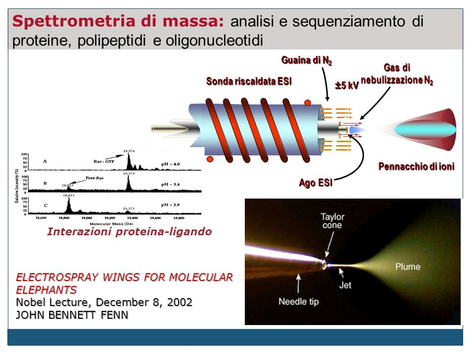 Gas di nebulizzazione N2 Interazioni proteina-ligando