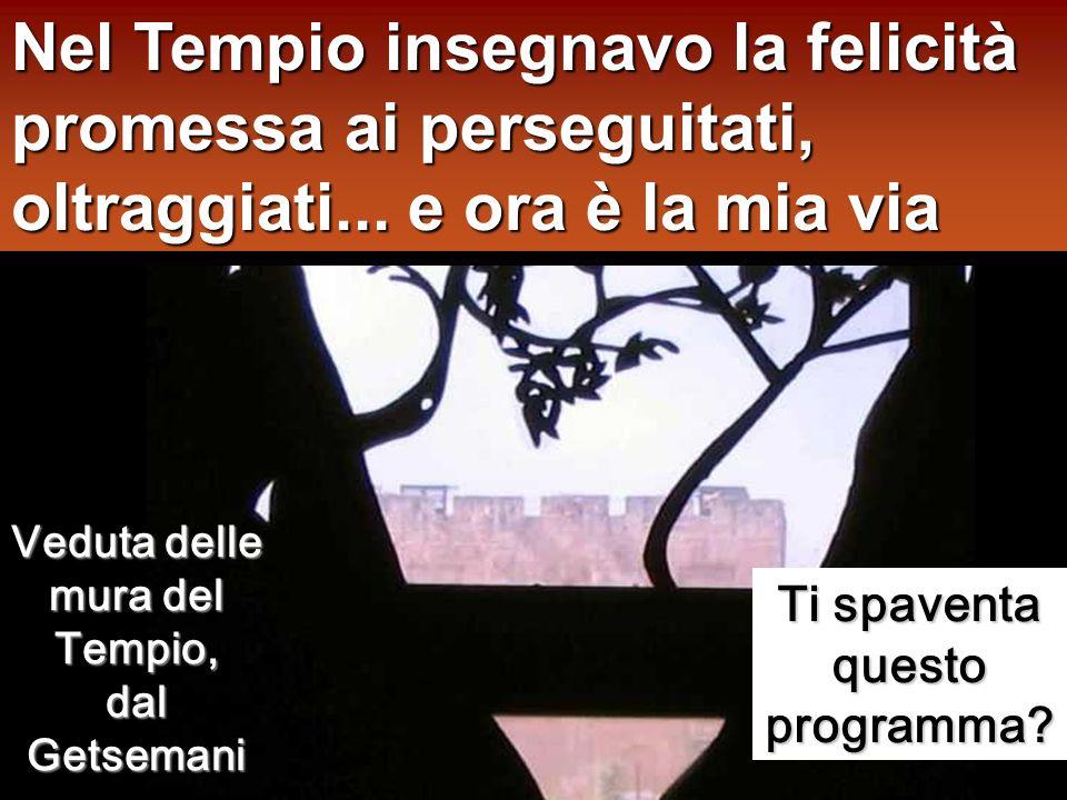 Nel Tempio insegnavo la felicità promessa ai perseguitati, oltraggiati