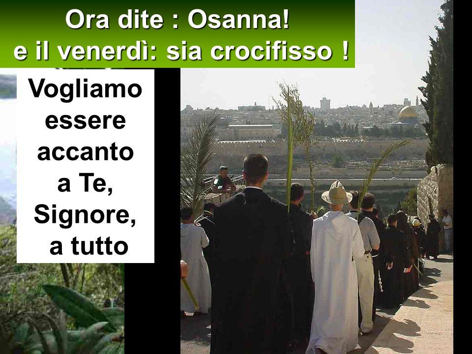 Ora dite : Osanna! e il venerdì: sia crocifisso !