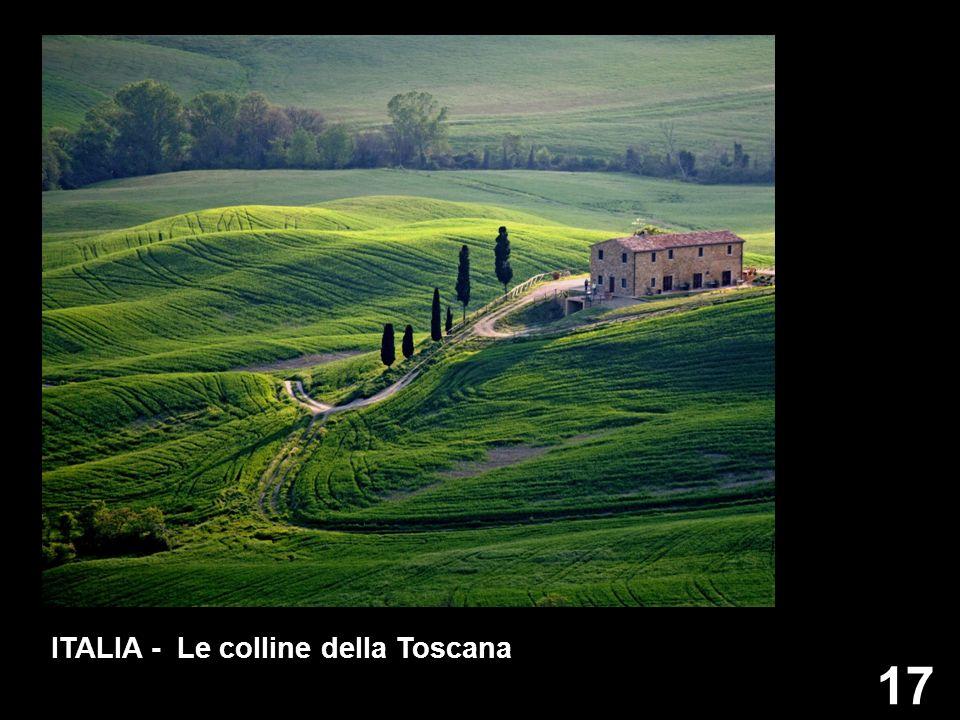 ITALIA - Le colline della Toscana