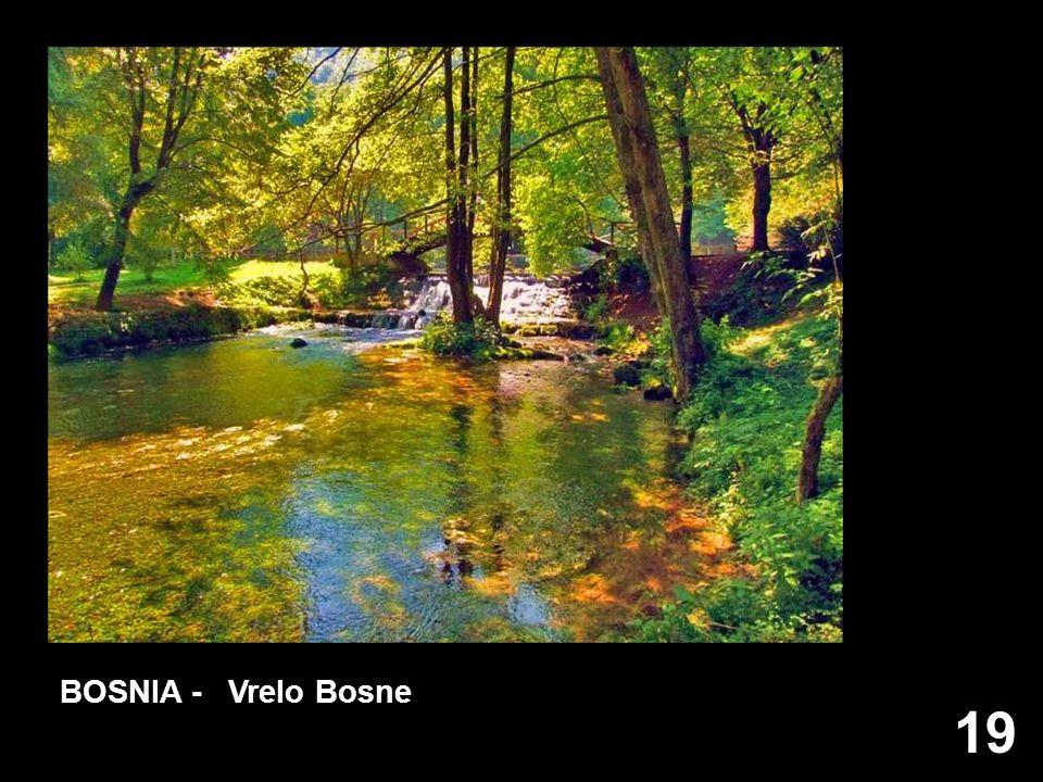 BOSNIA - Vrelo Bosne 19