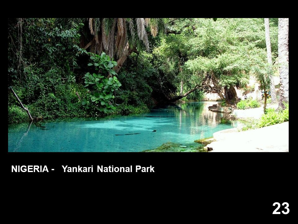 NIGERIA - Yankari National Park