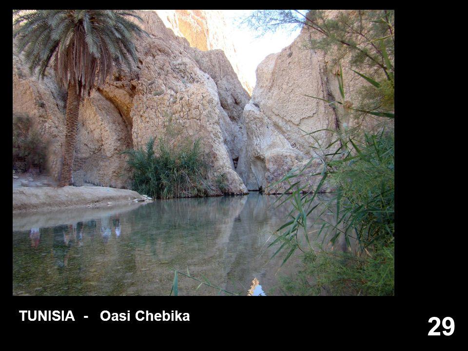 TUNISIA - Oasi Chebika 29