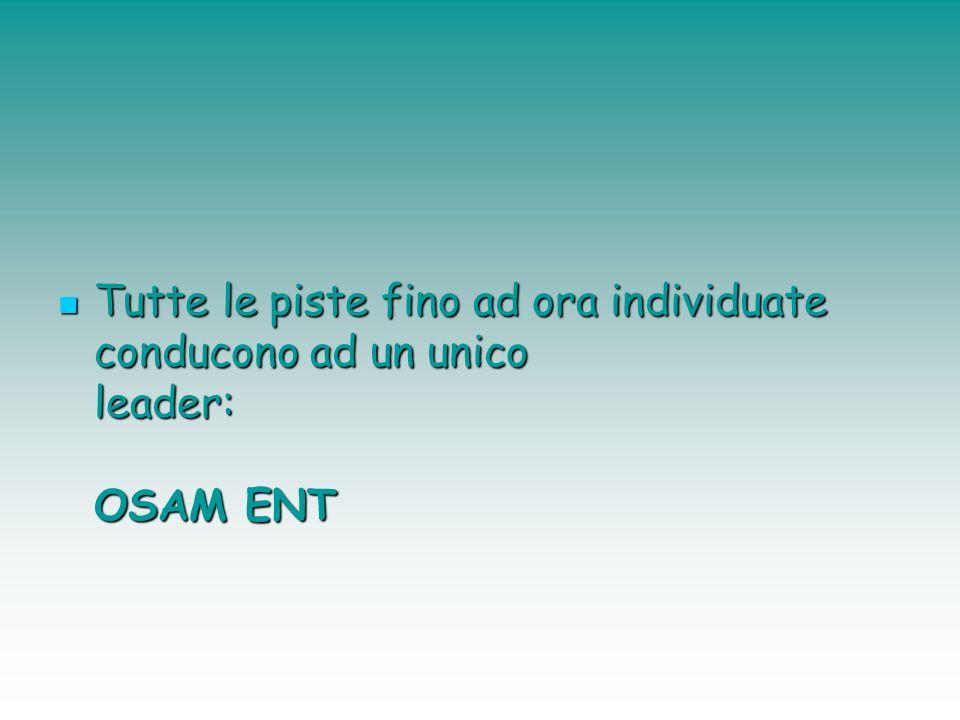 Tutte le piste fino ad ora individuate conducono ad un unico leader: OSAM ENT