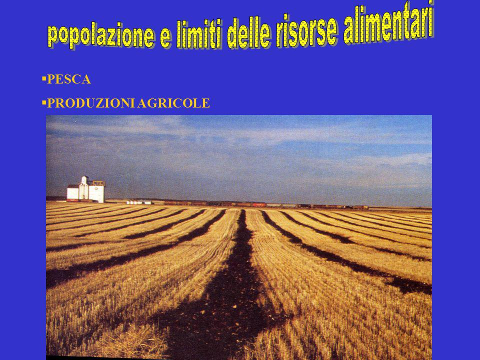popolazione e limiti delle risorse alimentari