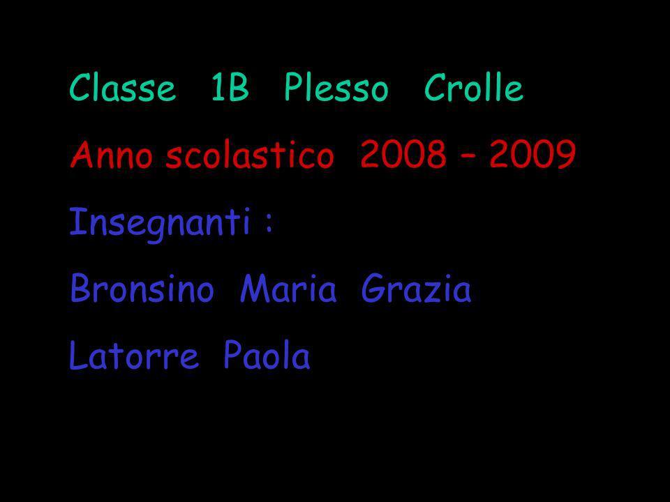 Classe 1B Plesso Crolle Anno scolastico 2008 – 2009. Insegnanti : Bronsino Maria Grazia.