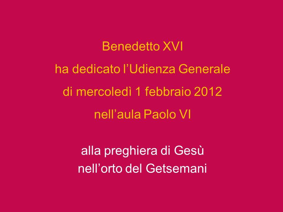 ha dedicato l'Udienza Generale di mercoledì 1 febbraio 2012
