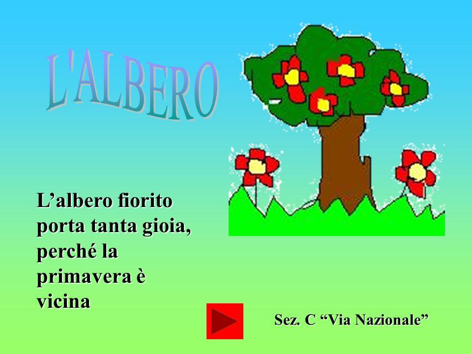 L ALBERO L'albero fiorito porta tanta gioia, perché la primavera è vicina Sez. C Via Nazionale